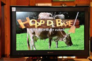 2011 Hopp de Bäse
